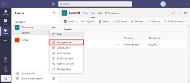 Manage Team Option
