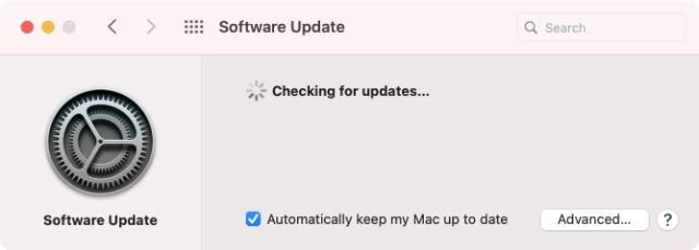 macOS Big Sur Software Update System Preferences checking for updates