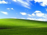 Alleged source code for Windows XP exposed in 4chan leak