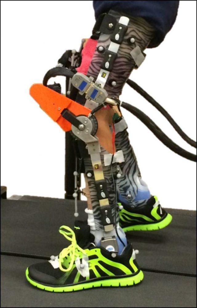 Smart Exoskeleton Market