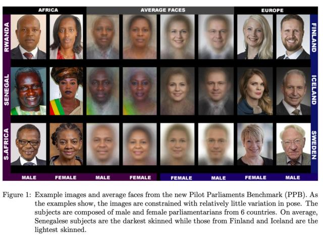 gender-shades-benchmark-example-2018.jpg