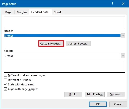 Page Setup custom header option
