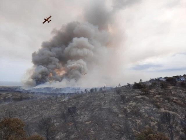 Au total, 250 hectares de végétations sont partis en fumée.
