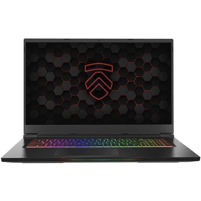 Eluktronics Gaming Laptop