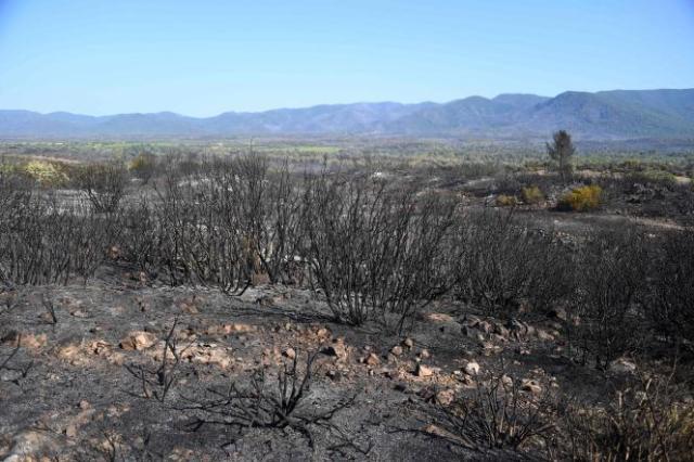 Le feu est parti lundi après-midi d'une aire de l'autoroute 57, au nord-est de Toulon.