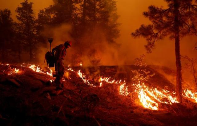 U.S. Forest Service firefighter Ben Foley lights backfires to slow the spread of the Dixie Fire, a wildfire near the town of Greenville, California, U.S. August 6, 2021. REUTERS/Fred Greaves