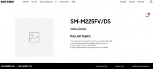 Malaysian website