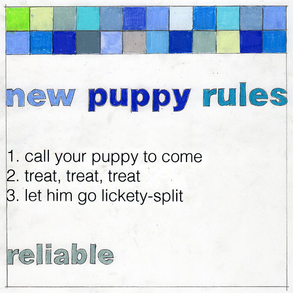newpuppyrules_reliableJO