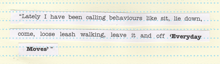 """Lately I have been calling behaviours like sit, lie down, come, loose leash walking, leave it and off 'Everyday Moves' """