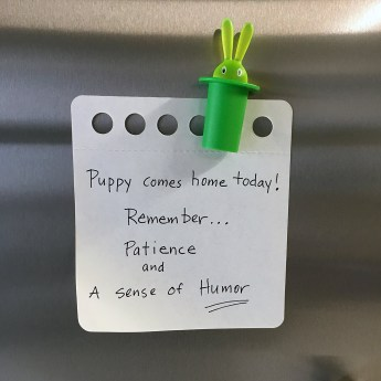 Note for fridge. There are two things we want you to always keep in mind as you raise this puppy. Patience and a sense of humor; write this on a piece of paper and put it on the refrigerator.
