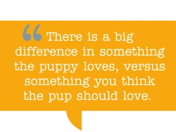 "pull quote: ""There is a big difference in something the puppy loves, versus something you think the pup should love."""