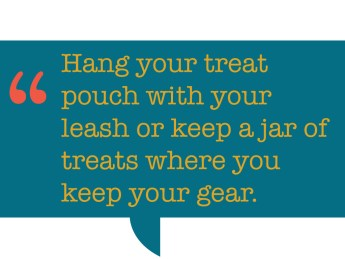 pull quote: Hang your treat pouch with your leash or keep a jar of treats where you keep your gear.