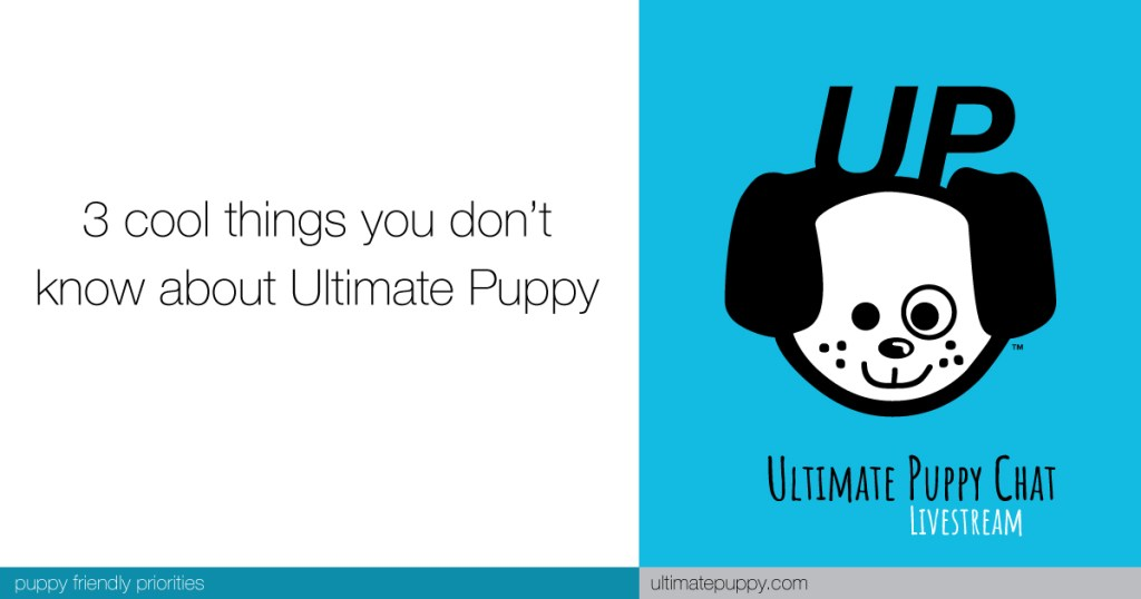 3 cool things you don't know about Ultimate Puppy