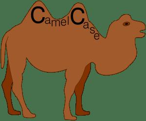 Camel case naming system used in Visual studio