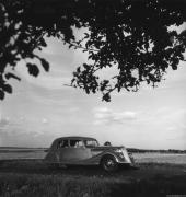 Renault Specs Dimensions Fuel Consumption