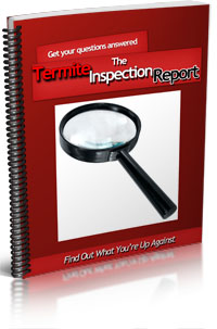 Free Inspection Report