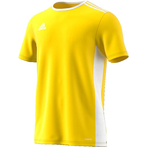adidas Entrada 18 Maglietta Uomo Giallo YellowWhite S