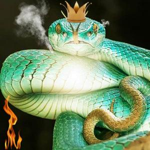 Das wahre Gesicht der bösen Königin. Quelle: Pinterest