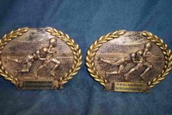 most outstanding defensive football player resins
