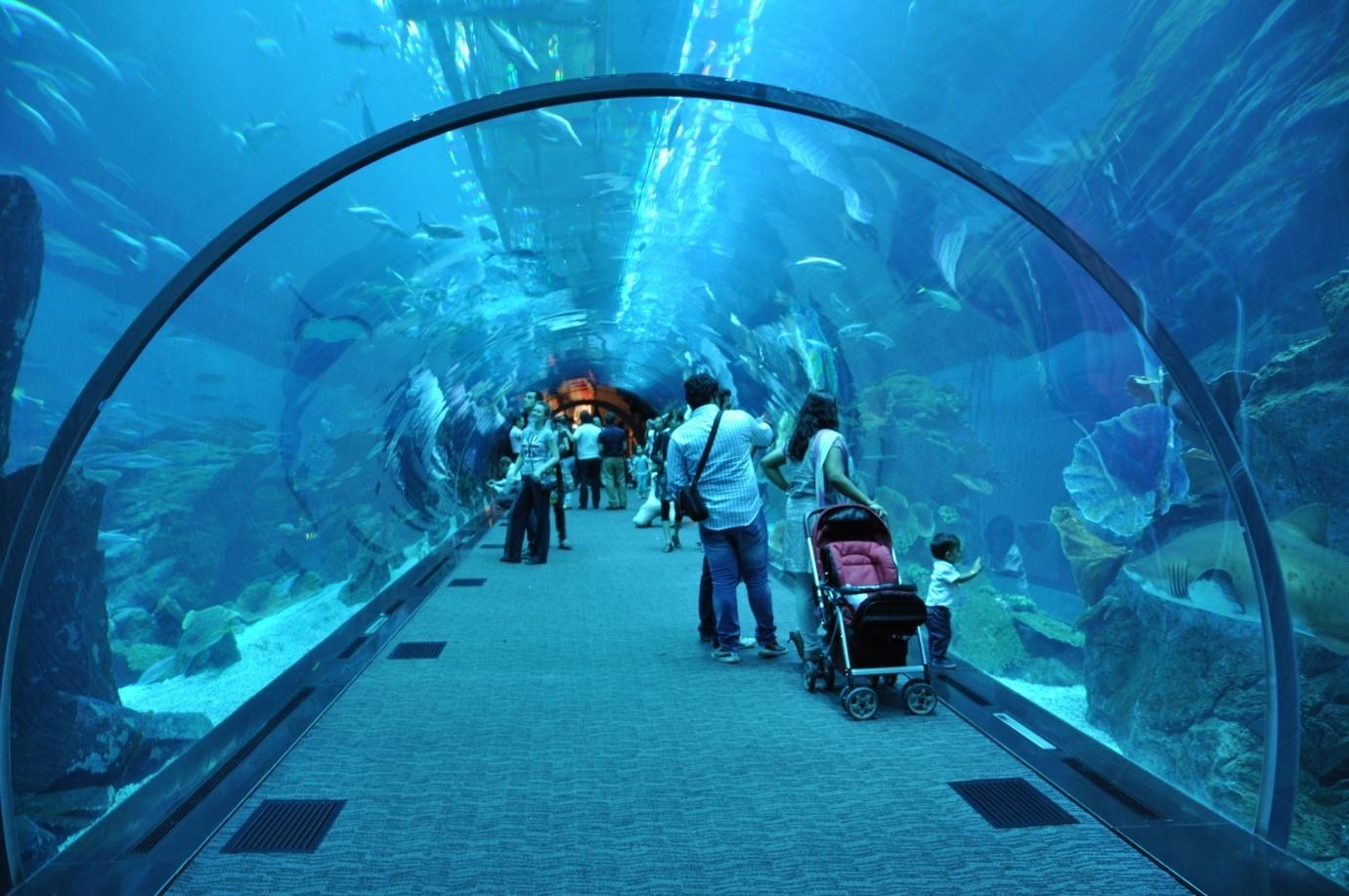 أماكن سياحية في دبي للعائلات