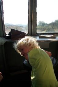 treno natura 3
