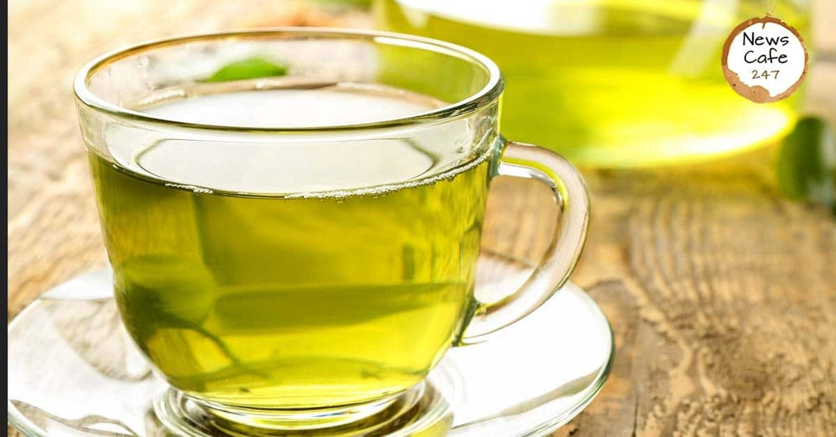 Green Tea and Green Coffee | Do They Really Work?