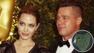 Photo of Anglina Jolie buys Brad $20m island