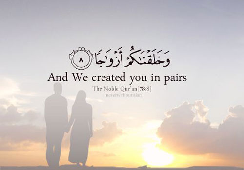 and we created you in pairs holy quran 78 8