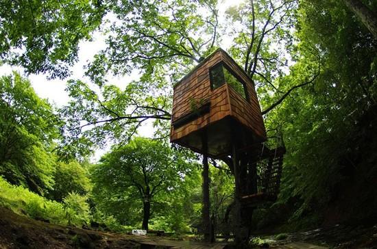 tree-house-9
