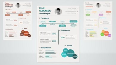 Photo of Free infographic Resume Template – Updated