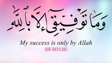Photo of 85+ Beautiful & Inspirational Islamic Quran Quotes / Verses in English