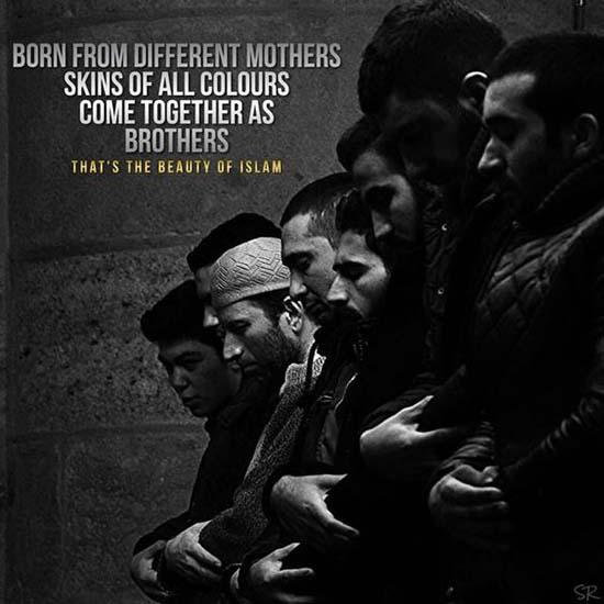 best islamic quotes