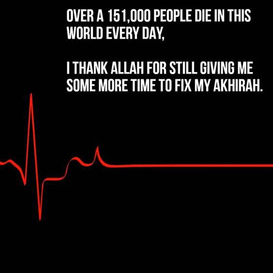 life islamic quotes