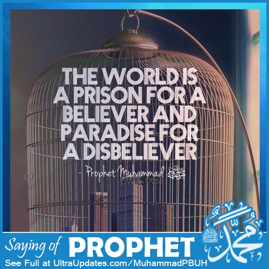 Prophet Muhammad Quotes about world dunya