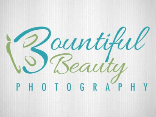 beautiful butterfly logos