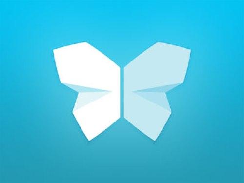 flat butterfly logo design