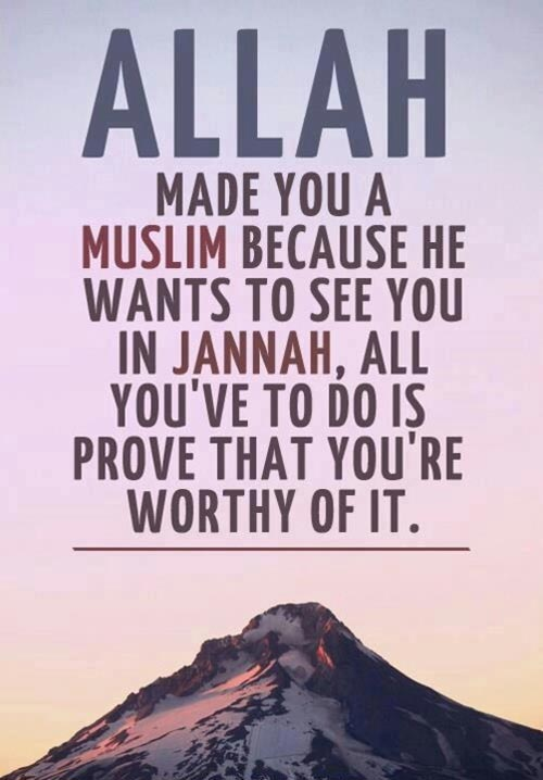 being muslim quote