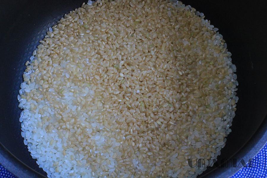 riz complet genmai