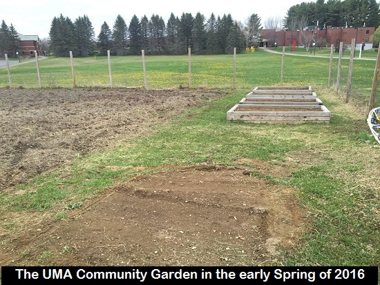 The UMA Community Garden, Early Spring 2016