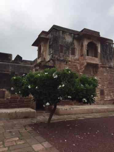 Nagaur - Rajastão