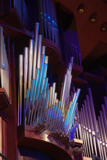 Shuke Organ Varna- Particolare delle 3200 canne