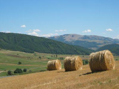agricoltura in valtopina campagna
