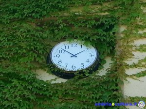 orologio giardino