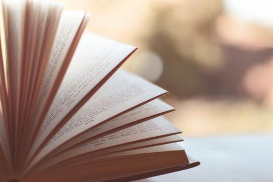 umbria libri book fest editori kmzero libri febbraio la rosa dell'umbria