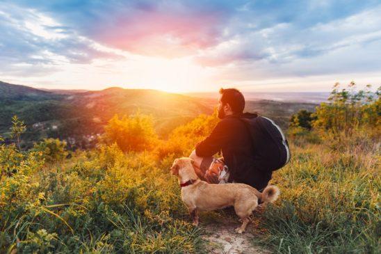 rapporto uomo cane