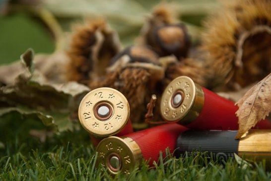 munizioni al piombo
