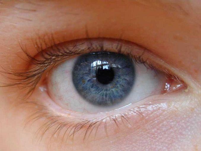 In Farmacia prevenzione sulla Maculopatia, la vista 'va messa a fuoco'