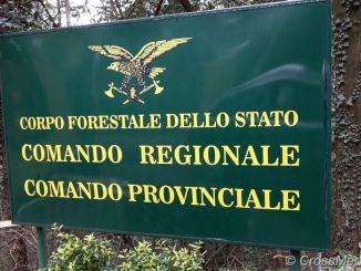 Tar Abruzzo, Corpo Forestale nei Carabinieri? E' incostituzionale