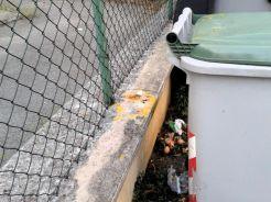 uova-marce-rifiuti (1)