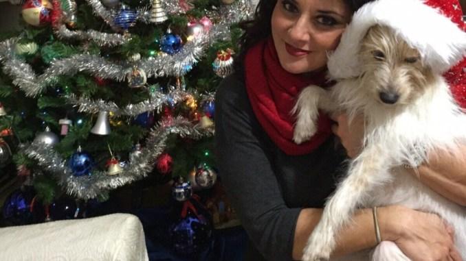 Natale in centro a Perugia, Emanuela Mori, sì, ma non per tutti